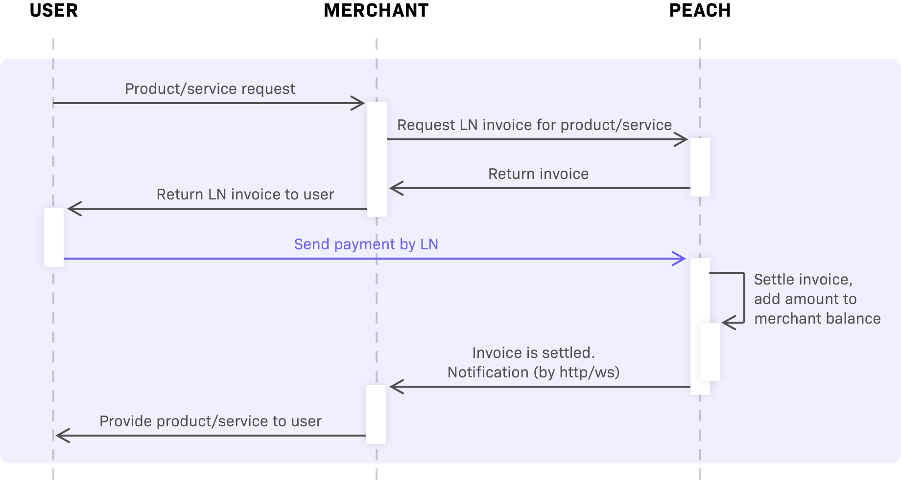 Lightning payment diagram